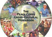 International Voluntary Work
