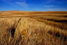Kansas Prairie / Let my teaching fall like rain and my words descend like dew, like showers on new grass, like abundant rain on tender plants. Deuteronomy 32:1-3