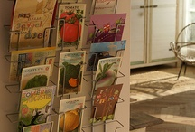 Postcard Collection Display