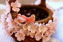 Pavasaris / Springtime / by Madara Spīla-Pajate
