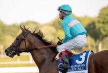 American Equus Jockey's