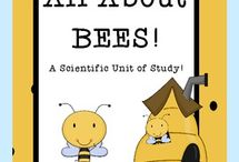 Science: Honeybees / Learning all about honeybees