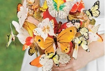 butterfly wed