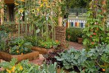 Garden stuff / Stuff for the garden