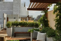 great vegetation and outdoor settings / by Maletz Design