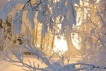 Vinter og snø ❄️