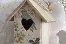 Ptaki i karmniki