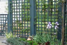 garden / by Joyce Wrye