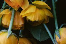 table-flower-setting