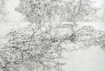 Line - Landscape
