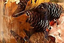 Podzim - dekorace, tvoření