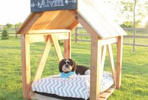 Projects for Pets / by RYOBI Power Tools