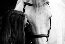 Pictures Ideas With My Horse!! / by Alyssa Marie Murray
