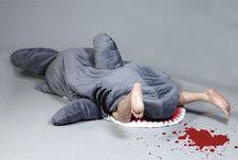 Shark Attack! / by Anita Wexler
