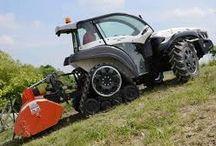Lawn Care & Management - Expert Advice