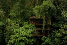 2014 Costa Rica / Envision / Nicaragua Trip