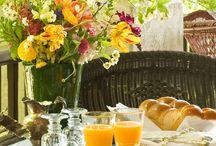 raňajky pod holým nebom
