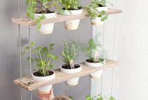 Idéer for hagen
