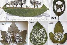 craft leafs