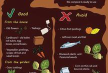 Trädgård- plantering-tips