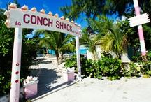 Turks & Caicos Activities / All of the amazing things you can do on our island!