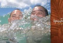 Perfect Moments in Hawaii - Finalist Billboards / by Hawaii