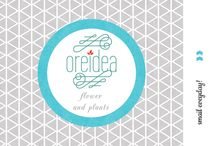 oreidea flower and plants