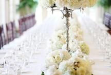 Svatba Nikča