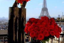 Red Flowers in Paris