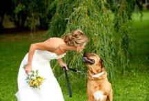 Wedding With Dog / by Ali Champion