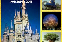 Disney Vacation / by Alicia Cardwell