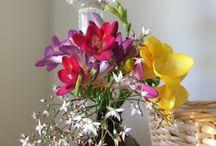 Flower Decor / Floral decorations