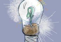 Spark growth pics