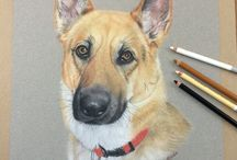 Pastel Pencil Drawings / by Realistic Pencil Drawing