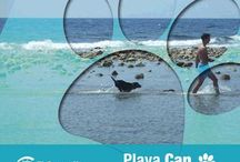 Playa Can El Campello / Playa Punta del Riu. Acepta la presencia de mascotas todo el año.