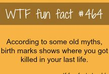 Random Facts!