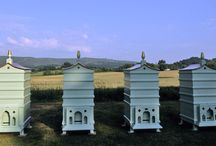 Garden Dreams...Beehives, Greenhouses & Sheds