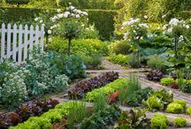 Садовый дизайн / описание ландшафта садового участка