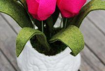 neusa almeida flores