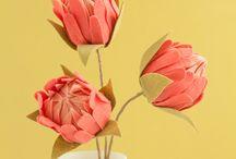 Felt Protea