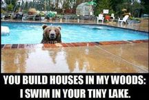 Realtor / Real Estate Humor!