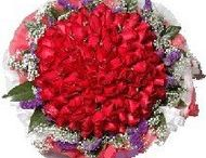 Send flowers to Baroda /  The best way to show your love and affection is through these flowers.let the flowers speak your emotion beautifully. http://www.onlinedelivery.in/flowers-delivery-in-baroda.aspx
