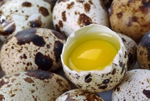 Tratamente cu oua de prepelita