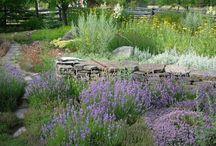 ideeen voor de tuin