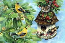 *Birds*