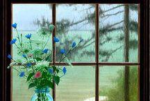 Photographs - Windows