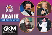 ARALIK 2014 KÜLTÜR SANAT BÜLTENİ / KÜLTÜR SANAT