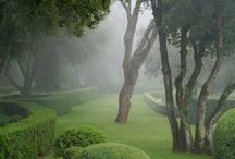 Gardens / by Ciaran Connolly