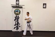 Kyokushin video