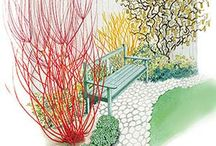 orchard design / by Brittany Ashby